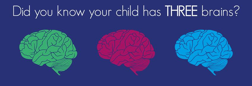Your Child has Three Brains